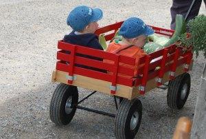 boys in wagon